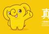 绒言绒语的2020 吉祥物学院年度盘点第5期:康园康复小象暖暖