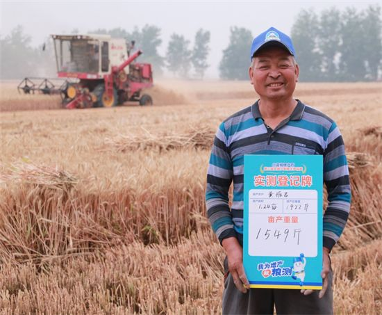 小蓝帽增产药测产队:实收实测 见证农户迎丰收